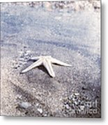 Bright Star Metal Print by Paul Grand
