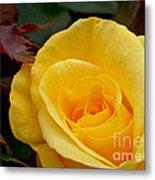 Bright Yellow Rose Metal Print