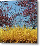 Brightly Comes The Spring Metal Print