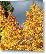 Brilliance Before The Storm Metal Print