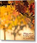 Brilliant Autumn Color Metal Print