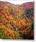 Brilliant Color Trees Metal Print