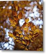 Brilliant Leaves Metal Print