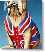 British Bulldog Metal Print by Andrew Farley