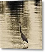 Bronze Lake Metal Print
