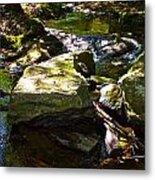 Brook Fall 31 Metal Print
