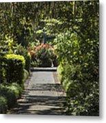 Brookgreen Gardens Path Metal Print