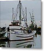 Brown And White Fish Boat Metal Print