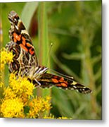 Brown-eyed Beauty Metal Print