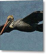 Brown Pelican Painterly Metal Print
