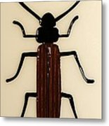 Brown Spruce Longhorn Beetle Metal Print