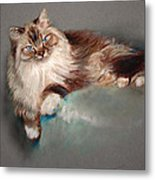 Browny White Metal Print