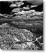 Bryce Canyon Ampitheater - Black And White Metal Print