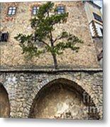 Buchlov Castle Metal Print