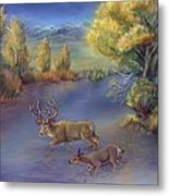 Buck And Doe Crossing River Metal Print