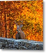 Buck Digital Painting - 01 Metal Print