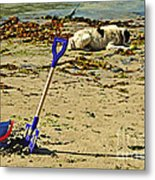 Bucket And Spade Metal Print