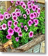 Bucket Of Blooms Metal Print