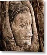 Buddha Head Strangled By The Roots  Metal Print