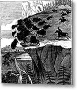 Buffalo Hunt, 1834 Metal Print