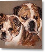 Bulldogs Metal Print