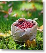 Bunch Of Cranberries Metal Print