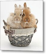 Bunnies A Basket Metal Print