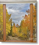 Burning Autumn Aspens Back Country Colorado Window View Metal Print