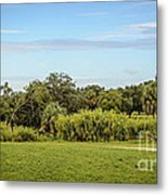 Busch Gardens Landscape Metal Print