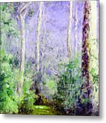 Bush Trail At The Afternoon Metal Print