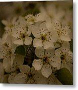 Bushel Of Flowers Metal Print