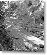 Butte Creek In Black And White Metal Print