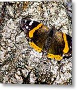 Butterfly Bark Metal Print