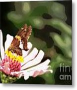 Butterfly Flower Metal Print