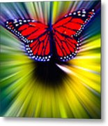 Butterfly Fly Metal Print