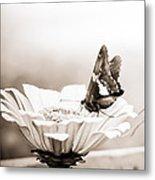 Butterfly On Flower Bw Metal Print