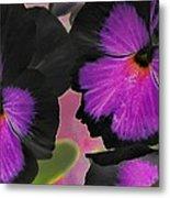 Butterfly Pansies Metal Print