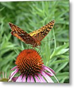 Butterfly Pitstop Metal Print