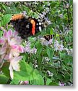 Butterfly Reflection Metal Print