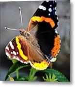 Butterfly Tai Chi On Lantana Luscious Lemonade Metal Print