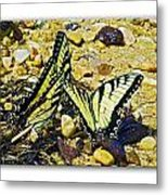 Butterlies At The Beach Metal Print