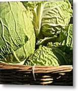 Cabbage Heads Metal Print