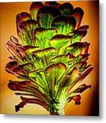 Cactus Time Metal Print
