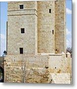 Calahorra Tower In Cordoba Metal Print
