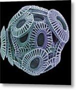 Calcareous Phytoplankton, Sem Metal Print