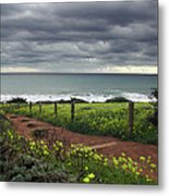Cambria Trail Metal Print