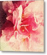 Camellia Flower With Music Metal Print