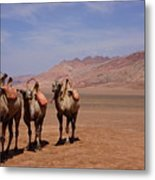 Camels On Desert With Huoyan Gobi Mountains Metal Print