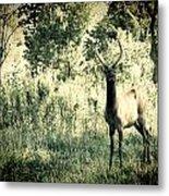 Camouflage Elk Metal Print