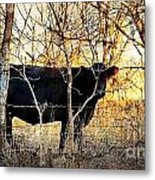 Can You See Me Now 2 Metal Print